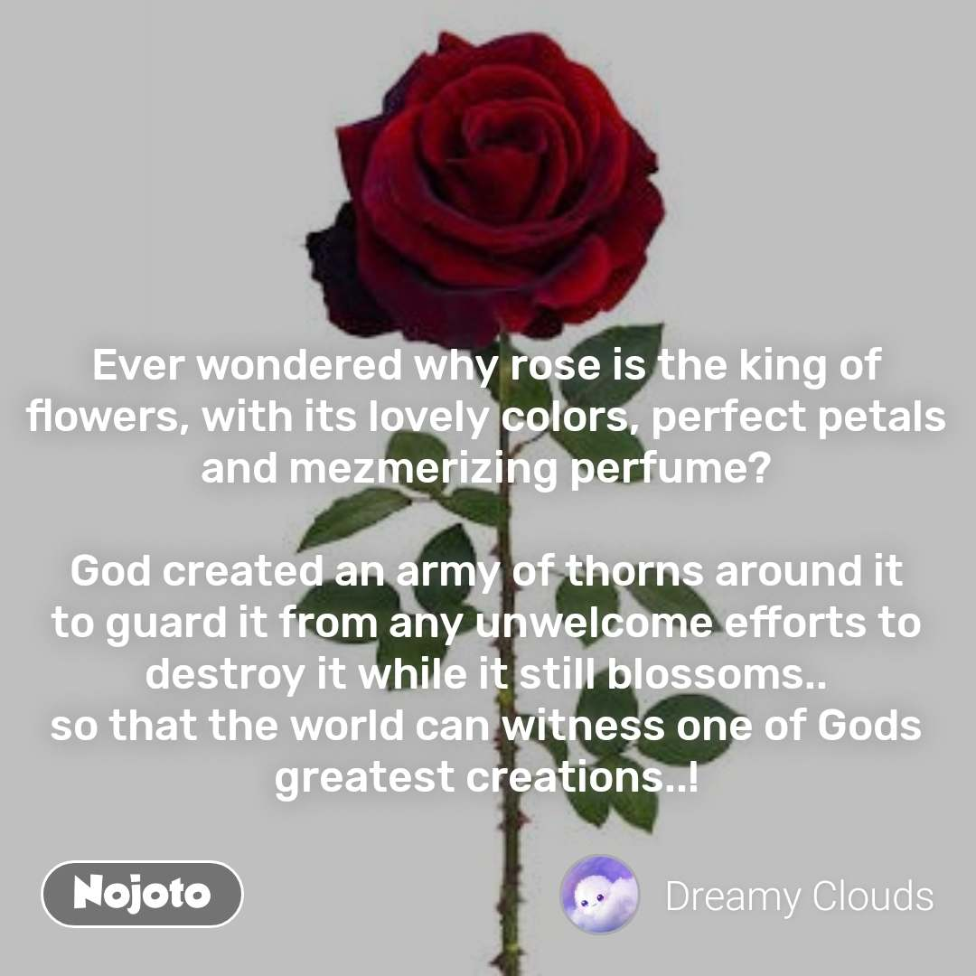 Ever wondered why rose is the king of flowers, with its lovely colors, perfect petals and mezmerizing perfume?  God created an army of thorns around it to guard it from any unwelcome efforts to destroy it while it still blossoms.. so that the world can witness one of Gods greatest creations..!