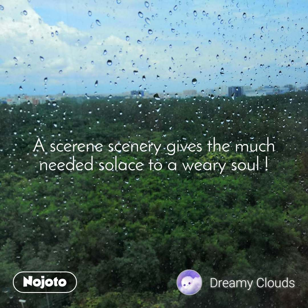 A scerene scenery gives the much needed solace to a weary soul !