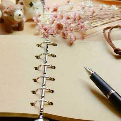 Diary_k_panne