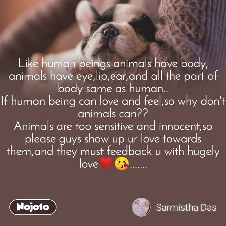 Like human beings animals have body, animals have eye,lip,ear,and all the part of body same as human.. If human being can love and feel,so why don't animals can?? Animals are too sensitive and innocent,so please guys show up ur love towards them,and they must feedback u with hugely love❤😘.......