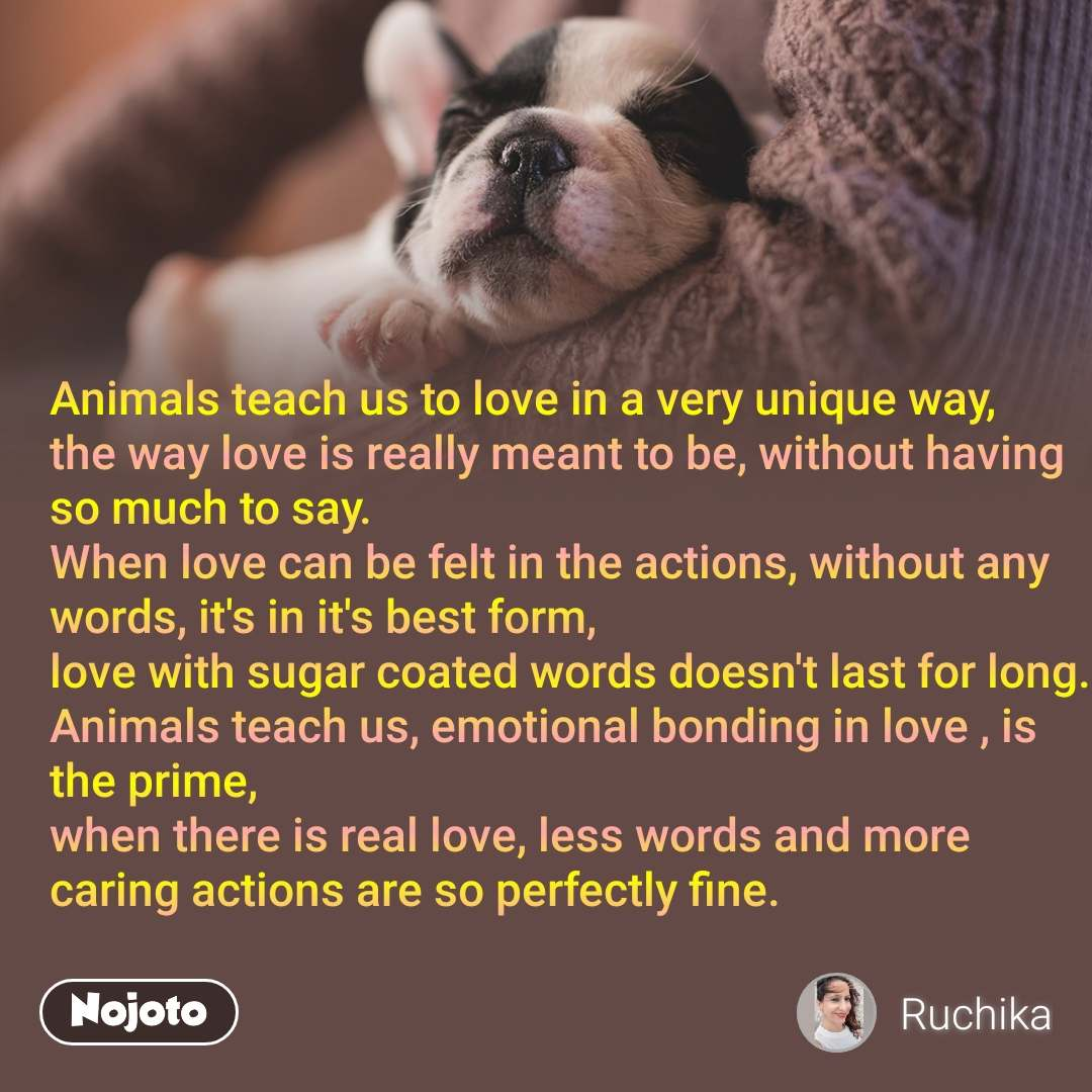 Animals teach us to love in a very unique way, the way love is really meant to be, without having so much to say. When love can be felt in the actions, without any words, it's in it's best form, love with sugar coated words doesn't last for long. Animals teach us, emotional bonding in love , is the prime, when there is real love, less words and more caring actions are so perfectly fine.