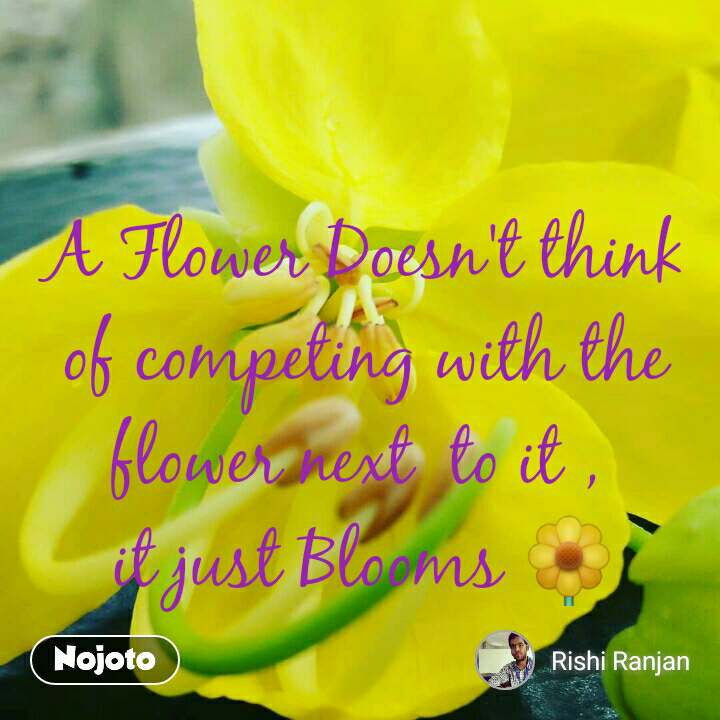A Flower Doesn't think of competing with the flower next  to it ,  it just Blooms 🌼