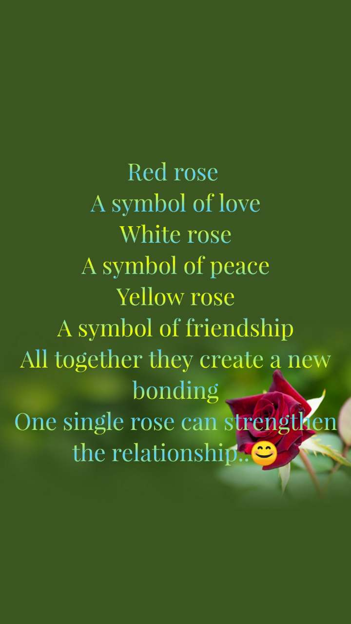 Red rose  A symbol of love White rose A symbol of peace Yellow rose A symbol of friendship All together they create a new bonding One single rose can strengthen the relationship..😊