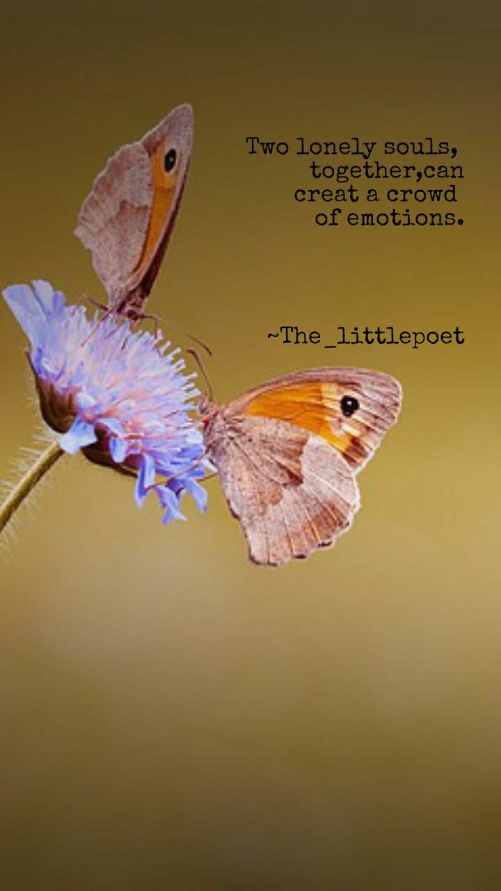 Two lonely souls,  together,can  creat a crowd  of emotions.     ~The_littlepoet