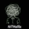 Nithalllaaa No.1 - #memes #sarcasm #shayari #trolls