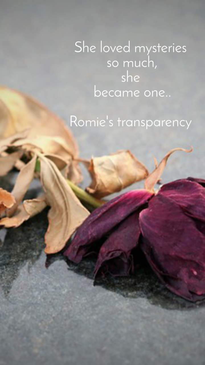 She loved mysteries  so much, she  became one..  Romie's transparency