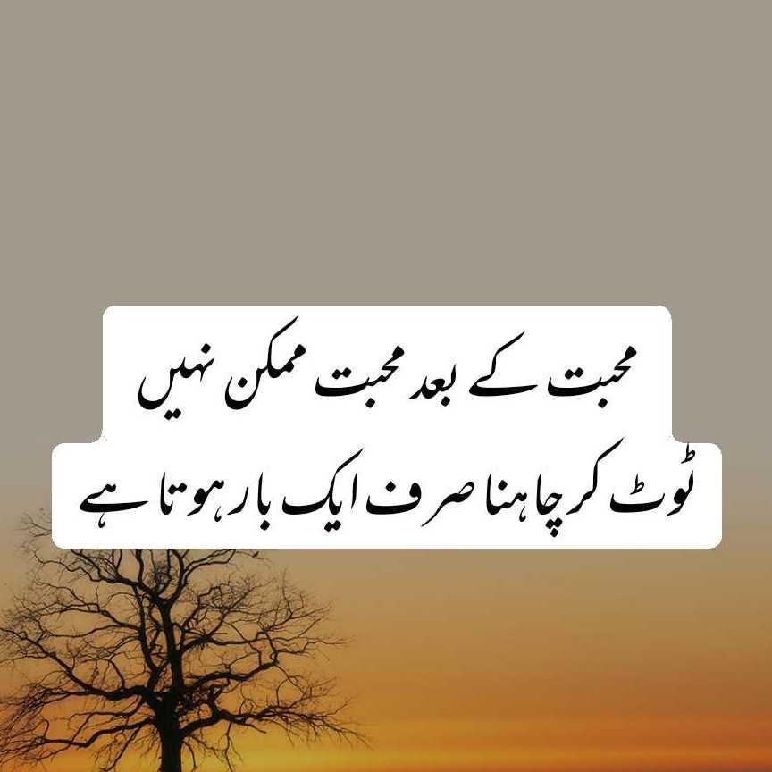 haseeb_writes43