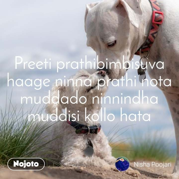 Preeti prathibimbisuva haage ninna prathi nota muddado ninnindha muddisi kollo hata