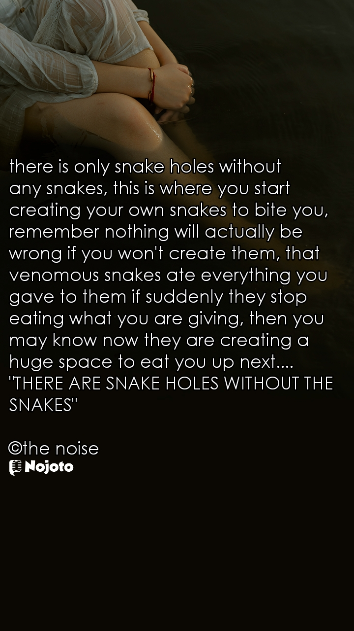 """there is only snake holes without any snakes, this is where you start creating your own snakes to bite you, remember nothing will actually be wrong if you won't create them, that venomous snakes ate everything you gave to them if suddenly they stop eating what you are giving, then you may know now they are creating a huge space to eat you up next....  """"THERE ARE SNAKE HOLES WITHOUT THE SNAKES""""  ©the noise"""