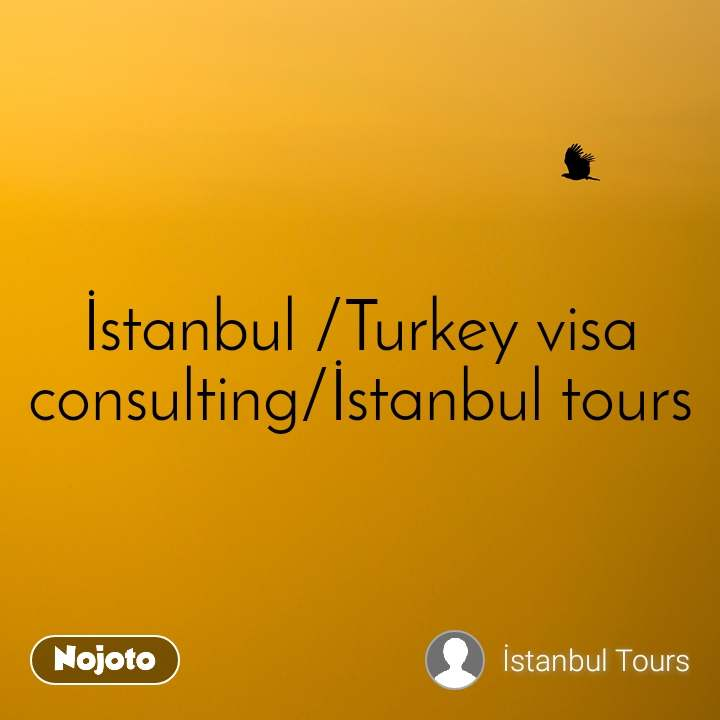 İstanbul /Turkey visa consulting/İstanbul tours