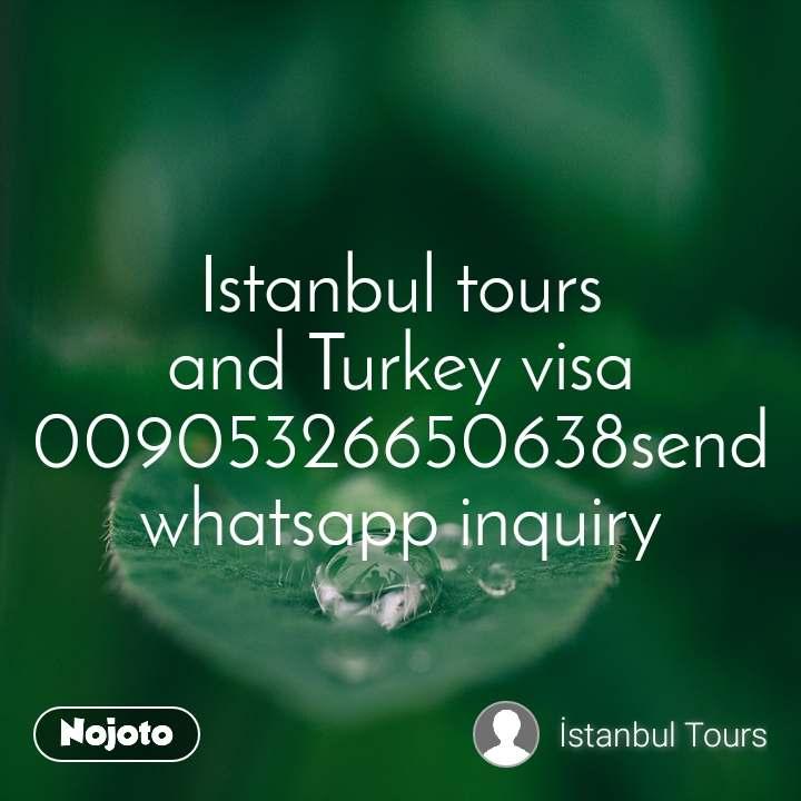 Istanbul tours and Turkey visa 00905326650638send whatsapp inquiry
