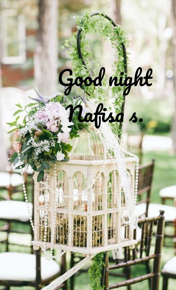 Good night Nafisa s.