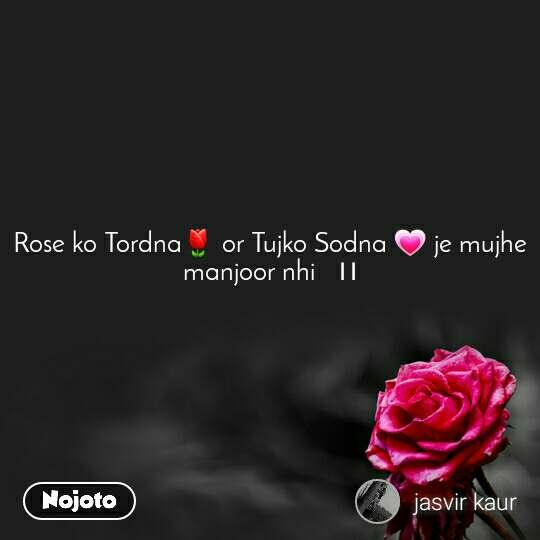 Rose ko Tordna🌷 or Tujko Sodna 💗 je mujhe  manjoor nhi   ।।