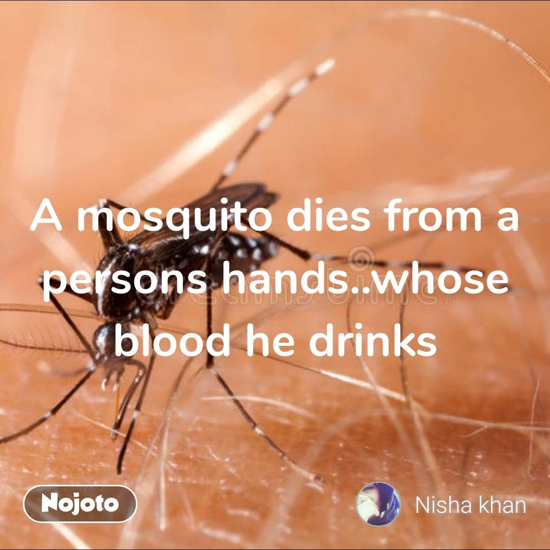 A mosquito dies from a persons hands..whose blood he drinks