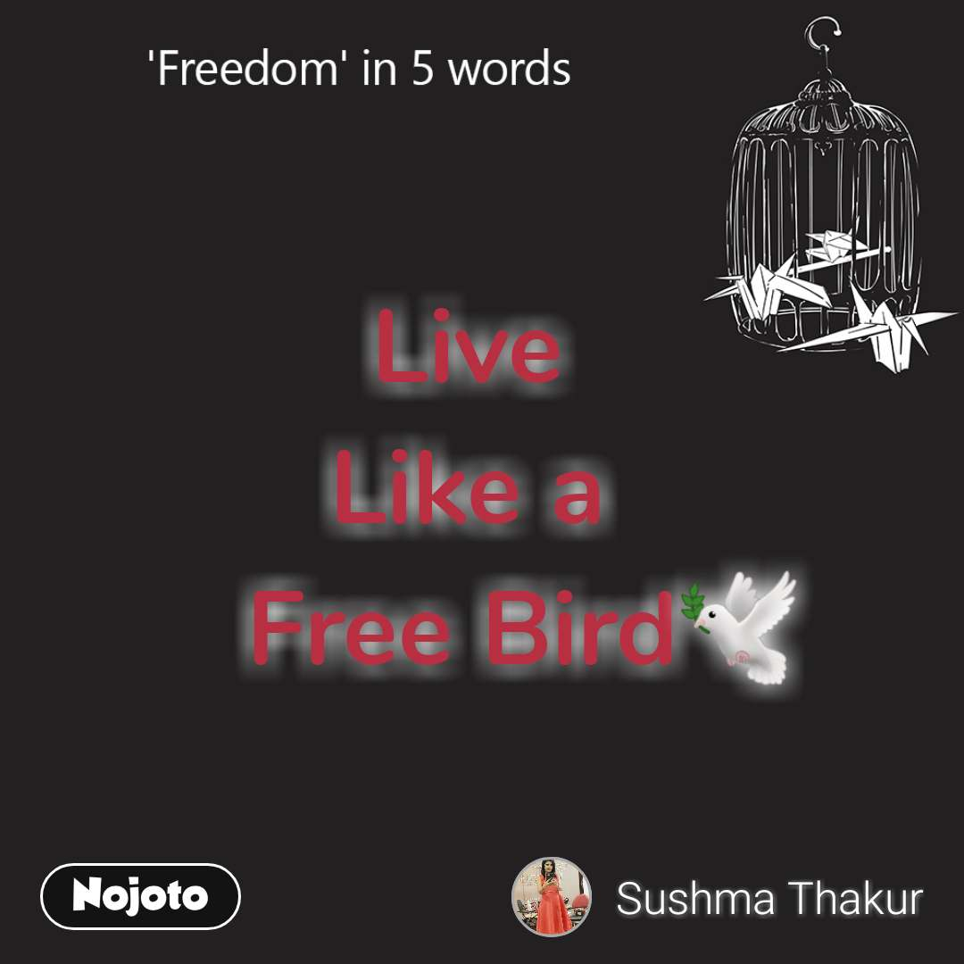 Freedom Live  Like a     Free Bird🕊️