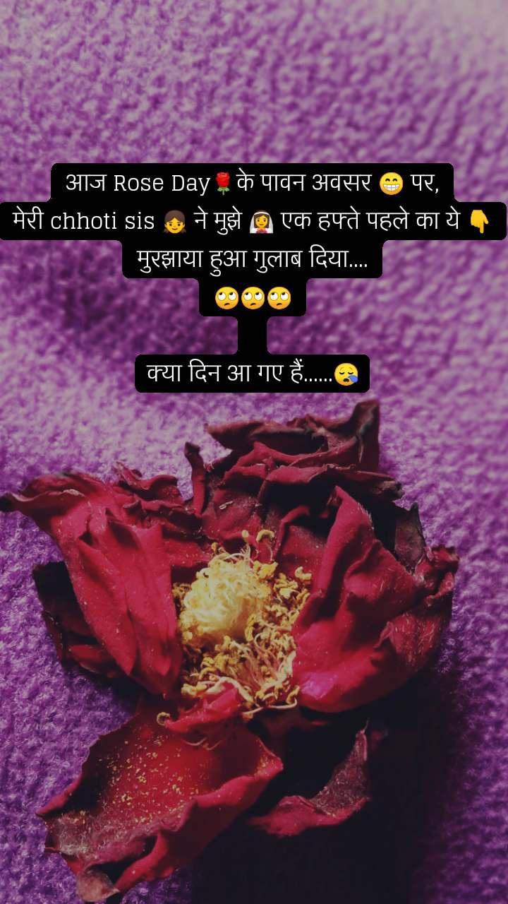 आज Rose Day🌹के पावन अवसर 😁 पर, मेरी chhoti sis 👧 ने मुझे 👰 एक हफ्ते पहले का ये 👇 मुरझाया हुआ गुलाब दिया.... 🙄🙄🙄  क्या दिन आ गए हैं......😪