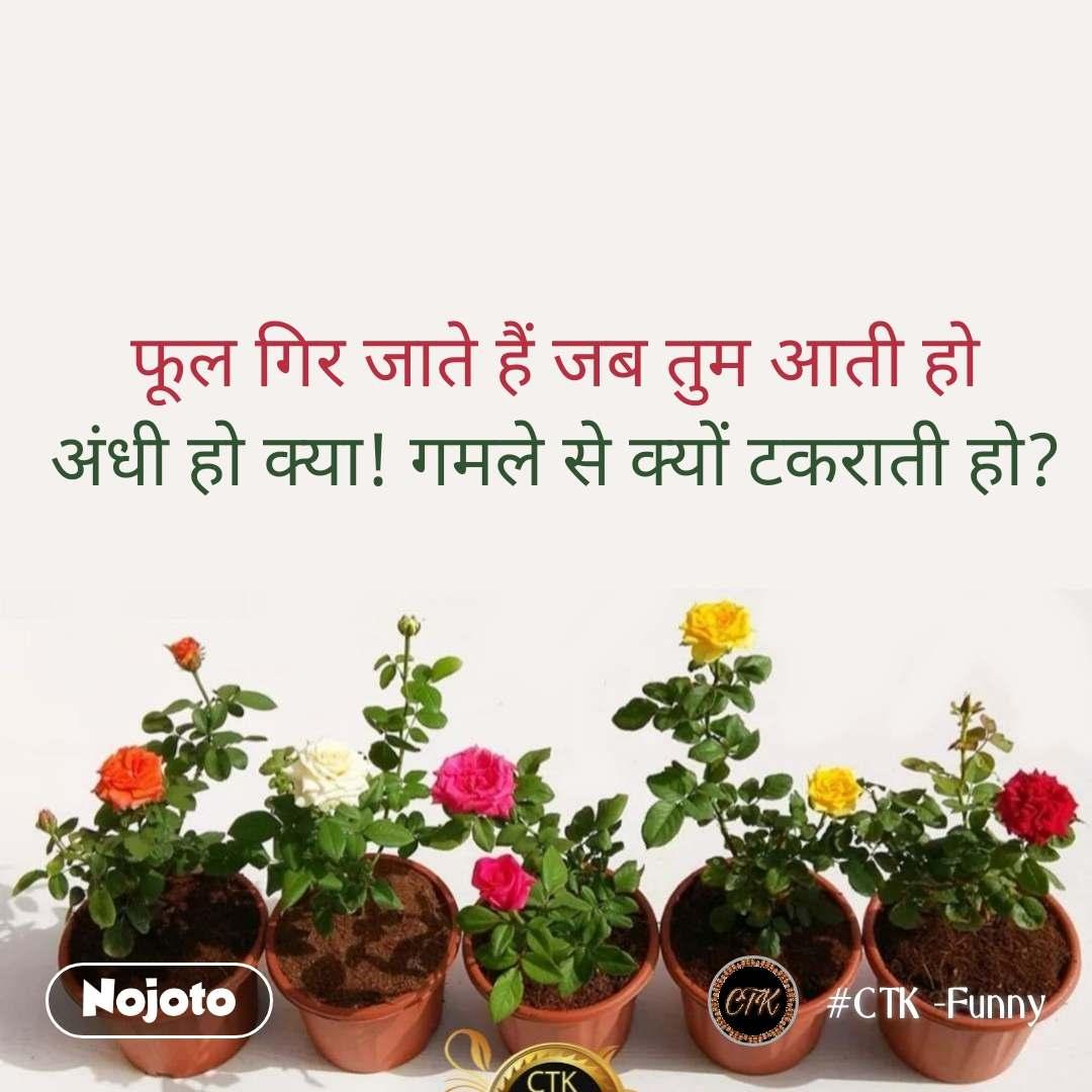 फूल गिर जाते हैं जब तुम आती हो अंधी हो क्या! गमले से क्यों टकराती हो?