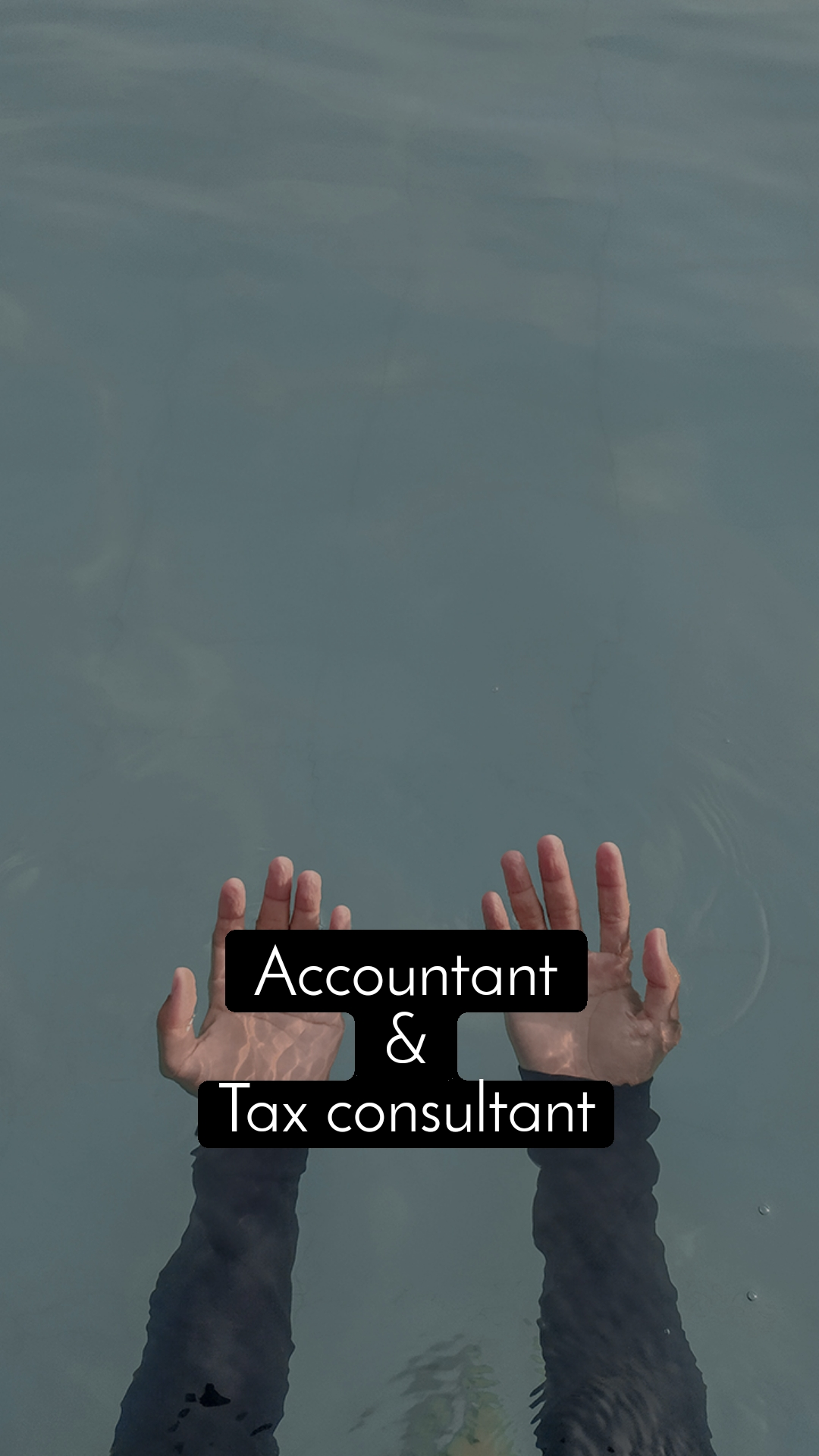 Accountant & Tax consultant