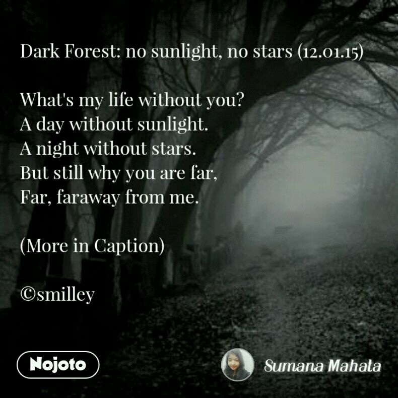 Dark Forest: no sunlight, no stars (12.01.15)   What's my life without you? A day without sunlight. A night without stars. But still why you are far, Far, faraway from me.  (More in Caption)  ©smilley