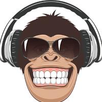 Mad Monkey_Funny_Talk