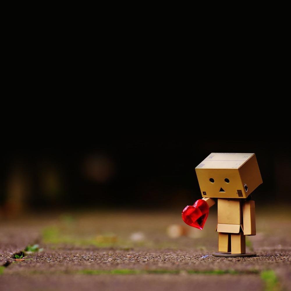 Love Or Friendship