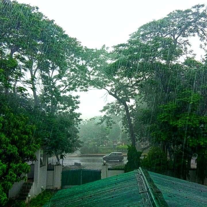 INCOMPLETE SONG OF RAIN  गिर रहा है आज सावन धुली स
