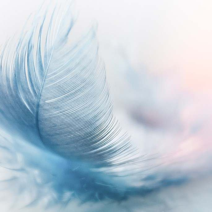 A feather must not be hard  and strong for its eff