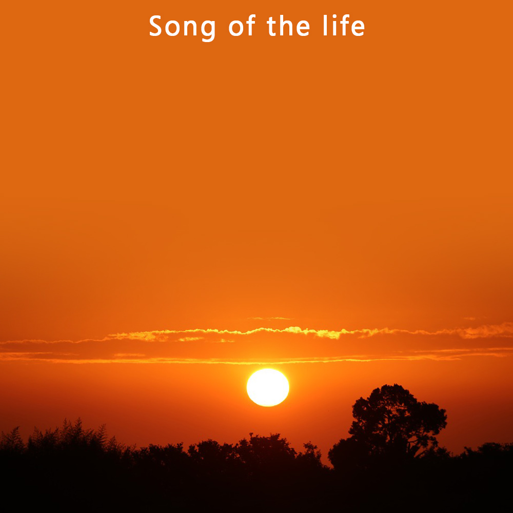 Life Song Quotes