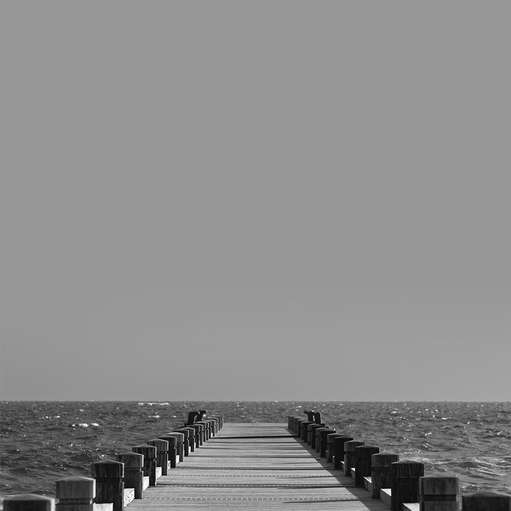 Bridge Quotes