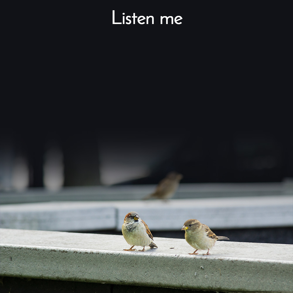 Listen quotes