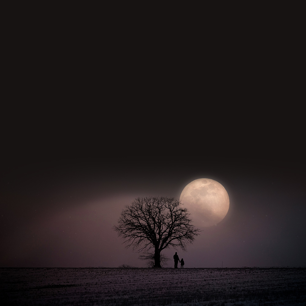 Moon Behind Tree Quotes