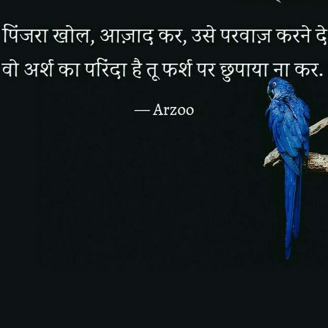 Arzoo writer pinjra thought #pinjra #khol #azaad #